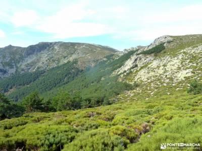 Collado Najarra-Hoya San Blas; serrania de ronda senderismo sierra nevada bastones trekking